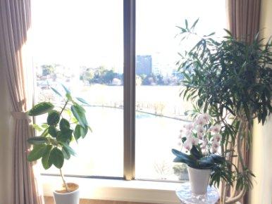 事務所は上野恩賜公園そばです